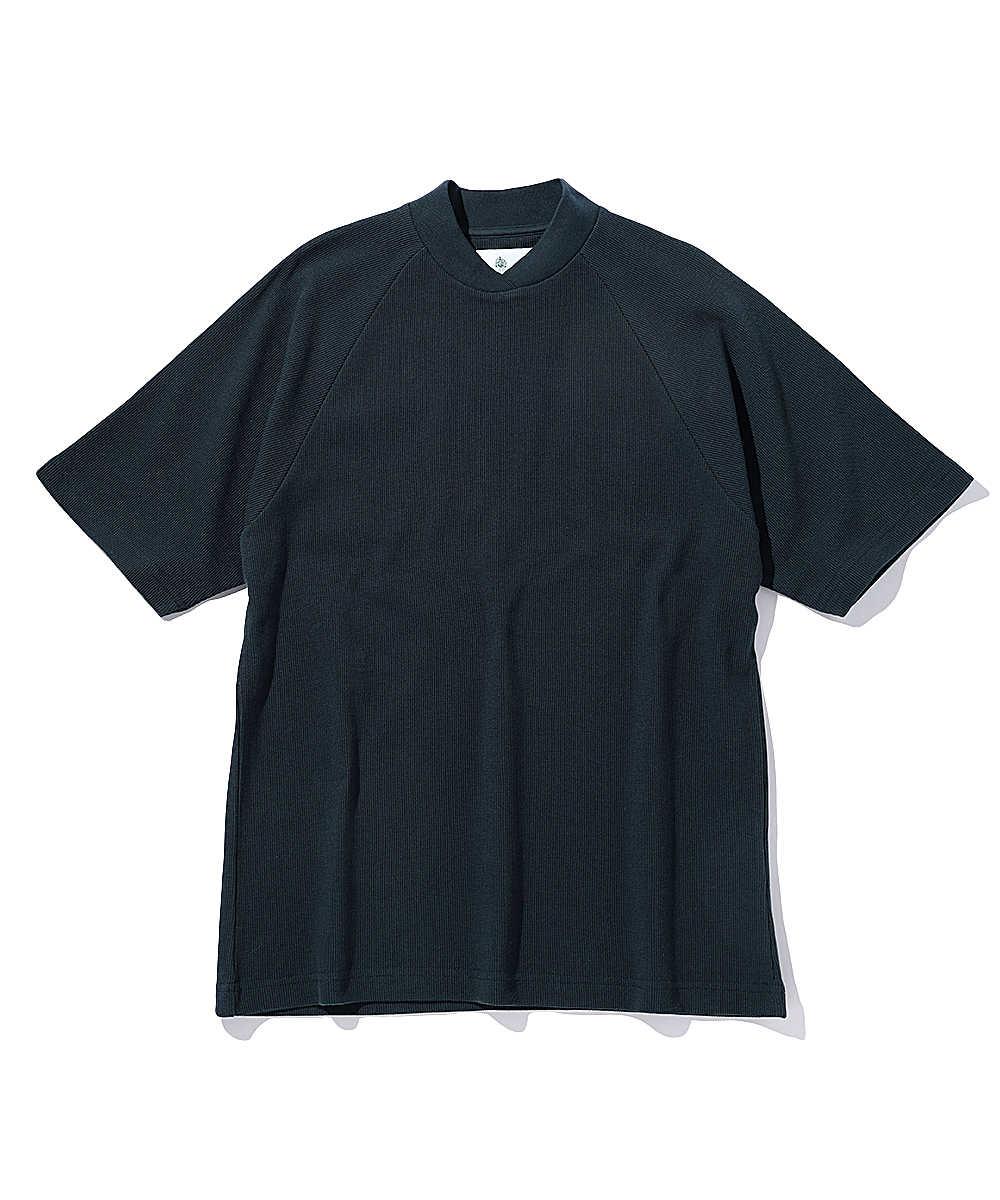 アルビオン Tシャツ